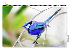 Carry-all Pouch featuring the photograph Blue Wren, Margaret River by Dave Catley