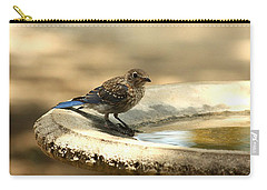 Carry-all Pouch featuring the photograph Bluebird Bath Time by Sheila Brown