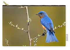 Bluebird Bliss Carry-all Pouch