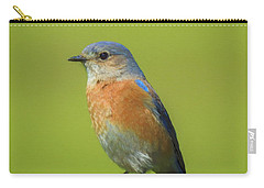 Bluebird Digital Art Carry-all Pouch