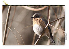 Bluebird In Beige Carry-all Pouch