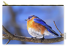Bluebird In Winter Carry-all Pouch