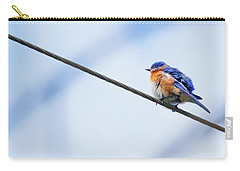 Carry-all Pouch featuring the photograph Bluebird Of Happiness by Linda Unger