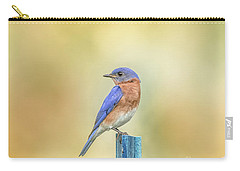 Carry-all Pouch featuring the photograph Bluebird On Blue Stick by Robert Frederick