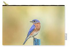 Bluebird On Blue Stick Carry-all Pouch by Robert Frederick