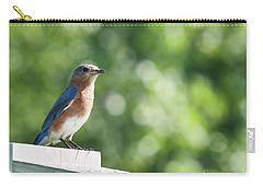 Bluebird Patrol Carry-all Pouch