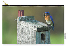 Carry-all Pouch featuring the photograph Bluebird by Steve Stuller