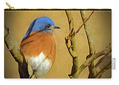 Bluebird Waiting For Spring Carry-all Pouch