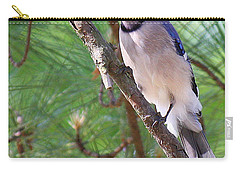 Bluejay Carry-all Pouch