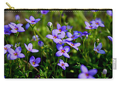 Carry-all Pouch featuring the photograph Bluets by Kathryn Meyer
