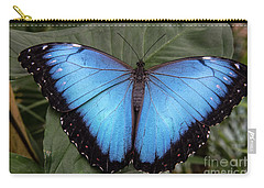 Blue Morph Carry-all Pouch by Kathy McClure
