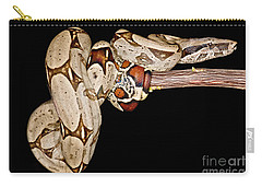 Boa Constrictor Carry-all Pouch