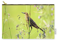 Boat-tailed Grackle Female Carry-all Pouch