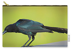 Boat-tailed Grackle Male Carry-all Pouch