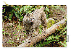 Bobcat In Forest Carry-all Pouch by Teri Virbickis