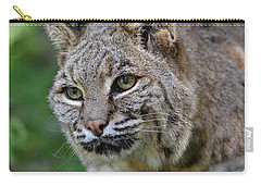 Bobcat In The Trees Carry-all Pouch