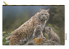 Bobcat Mother And Kittens North America Carry-all Pouch