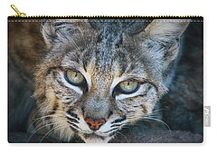Bobcat Stare Carry-all Pouch by Elaine Malott