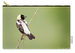 Bobolink Looking At You Carry-all Pouch