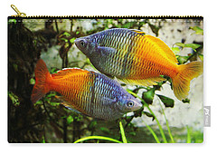 Boeseman's Rainbowfish Carry-all Pouch
