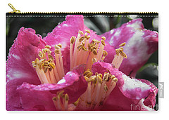 Carry-all Pouch featuring the photograph Bold by Judy Hall-Folde