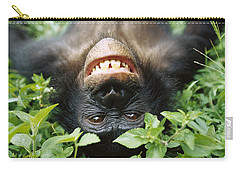 Bonobo Smiling Carry-all Pouch