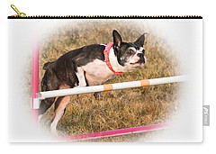 Carry-all Pouch featuring the photograph Boston Agility by Debbie Stahre
