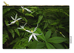 Woodland Treasures Carry-all Pouch by William Tanneberger