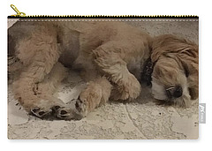 Brandy Carry-all Pouch by Val Oconnor