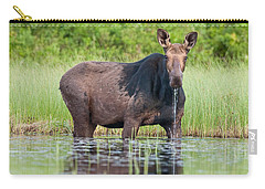 Breakfast At Mooshead Carry-all Pouch by Brent L Ander