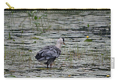 Breezy Blue- Great Blue Heron Carry-all Pouch by David Porteus