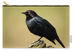 Brewers Blackbird Resting On Log Carry-all Pouch