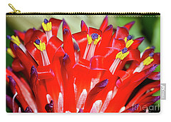 Carry-all Pouch featuring the photograph Bright Blooming Bromeliad By Kaye Menner by Kaye Menner