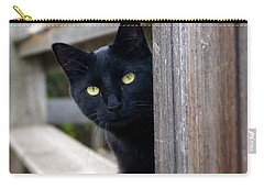 Bright Eyed Kitty Carry-all Pouch