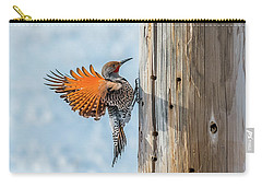 Brilliant Northern Flicker Woodpecker Carry-all Pouch by Yeates Photography