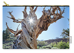 Bristlecone And Sun Carry-all Pouch