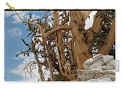 Bristlecone Pine 6 Carry-all Pouch