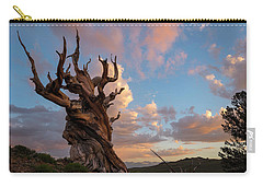Bristlecone Pine Sunset Carry-all Pouch