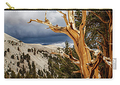 Bristlecone Pine Tree 8 Carry-all Pouch
