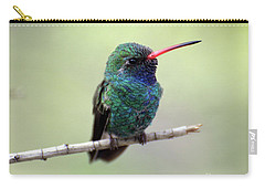 Broad-billed Hummingbird Portrait Carry-all Pouch