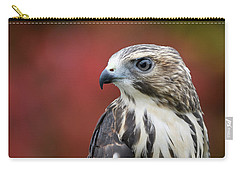 Broad Wing Hawk Carry-all Pouch