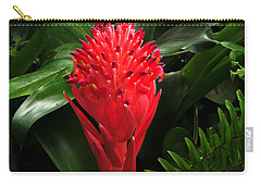 Bromeliad 9-18-15 Carry-all Pouch