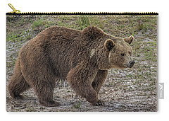 Brown Bear 6 Carry-all Pouch