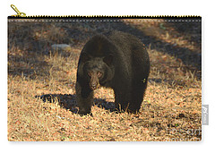 Black Bear Black Bear What Do You See Carry-all Pouch