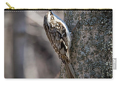 Carry-all Pouch featuring the photograph Brown Creeper  by Ricky L Jones