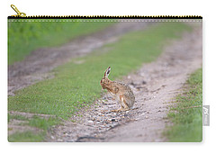 Brown Hare Cleaning Carry-all Pouch