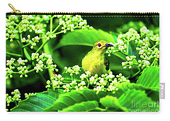 Brown Neck Sunbird Carry-all Pouch