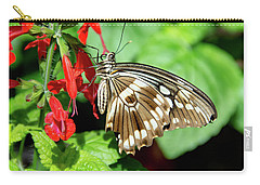 Brown Swallowtail Butterfly Carry-all Pouch