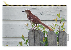 Carry-all Pouch featuring the photograph Brown Thrasher by Richard Rizzo