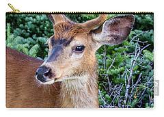 Buck In Velvet Carry-all Pouch